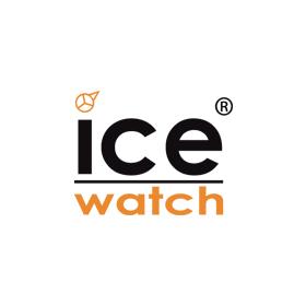 12 ice-watch